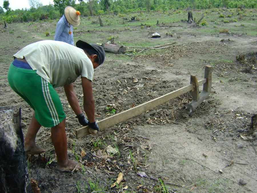 Photo of A farmer's story