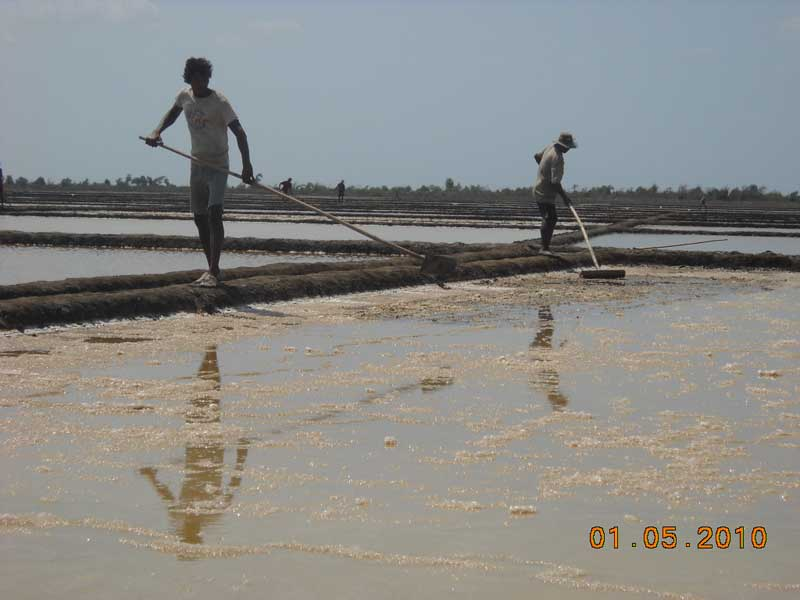Photo of Mon salt producers feel the pinch as prices fall
