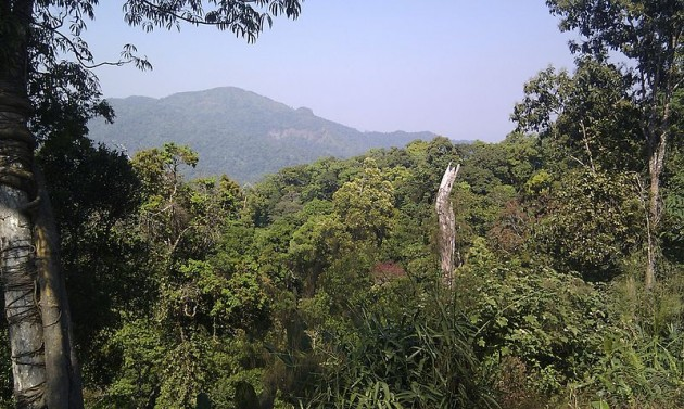 Kaengkrachan National Park (Photo: Wikipedia Commons)
