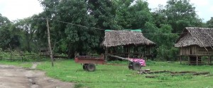 Kawmu village