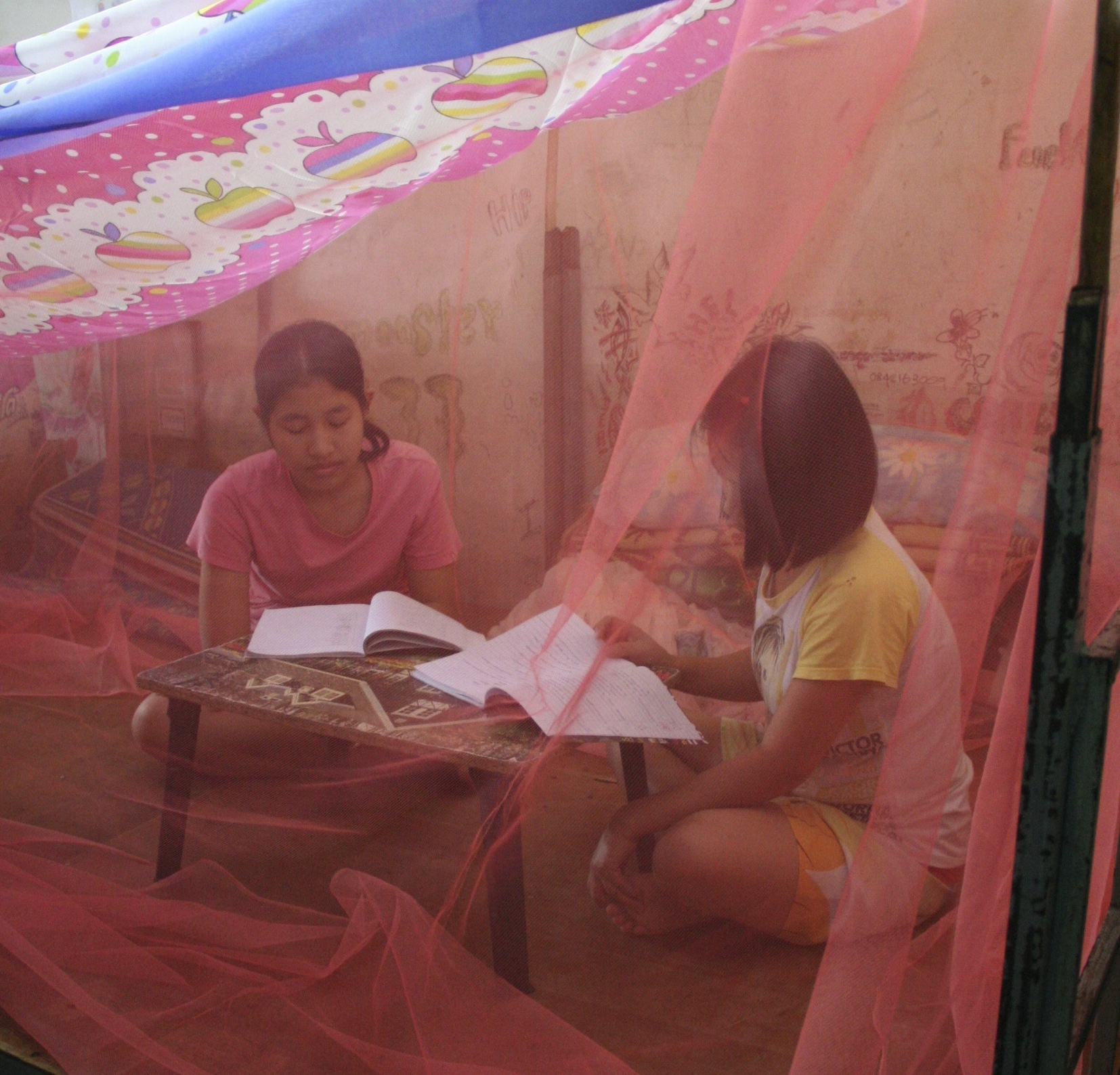 Photo of British Women Deliver Mosquito Nets To Combat Dengue Risk