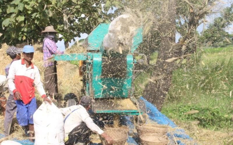 *As labourers leave Myanmar delta, farmers struggle to mechanise
